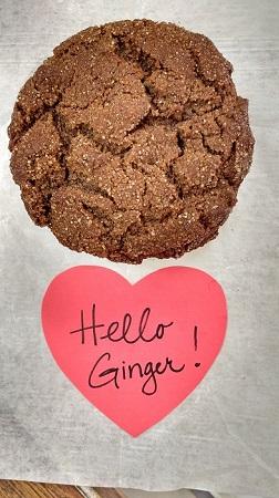 ginger crinkle cookie